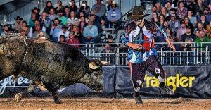 Freesytle_Bullfighting